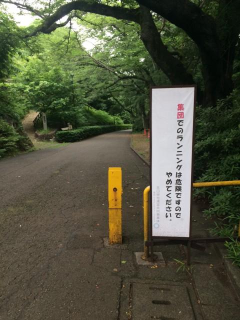 生田緑地ランニングコース