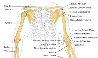 ランニング中の肩や首のコリの解消策